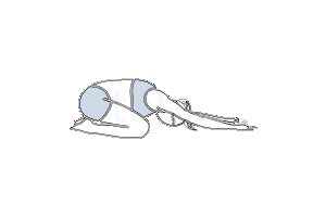 childs-pose-balasana-300x200