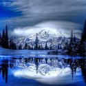 Wintertime Reflections